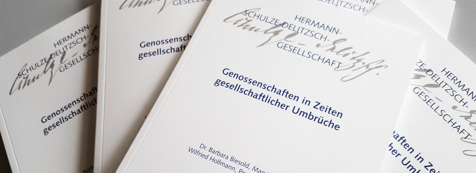Publikationen des DHSDG